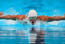Swimming / Dive into the season with Modell's! / by Modell's Sporting Goods