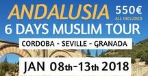 Andalusia Tour   6 Days Muslim Travel   All Included 550€ / Ever dream about exploring the Islamic Heritage of Andalusia (Spain)? This is your moment! Best deal 6 Days - 4*hotels - Muslim Tour Guide - Halal food - Private driver for just 490€   More details on: https://ilimtour.com/tours/andalusia-muslim-tour/