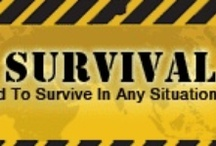 I.... I will survive, as long as i know how to ..... / survival, post apocalypse, food prep