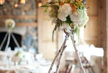 Country Wedding / by Butterfly Events