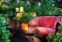 Garden + Yard ideas / by Ashley Lewis