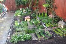 Fairy Gardens / by Dee Anne Burnett