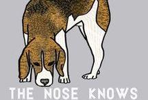 Beagles / by Dee Anne Burnett