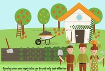 Home & Garden Infographics / Home and Garden Infographics curated by InfographicBee.com