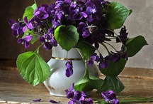 The Color Purple...