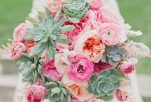 Pink Wedding Details / Find your new favorite pink wedding ideas and pink wedding details here for a wedding color palette that's nothing short of pretty in pink.