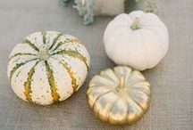 Fall Weddings / See how amazing your fall wedding can be with fall wedding ideas covering all aspects of the big day from fall wedding colors to fall wedding dresses and flowers.