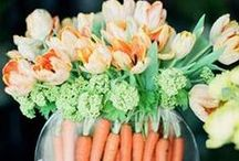 Spring Weddings / The sweetest spring wedding colors and spring wedding ideas for the perfect spring wedding day. Looking for spring wedding dresses or flowers? We have you covered there, too!