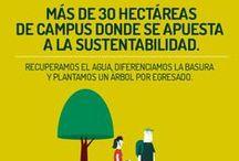 Ser Sustentables / Pequeñas acciones para ayudar a nuestro planeta