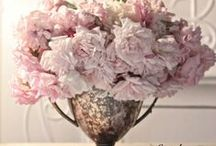 For the LOVE of SHABBY CHIC!