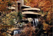 Architectural Phenomenon