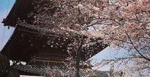 Viajar - Japón con un bebé / Consejos para viajar a Japón con un bebé (9 meses) y fotos del país nipón.