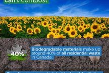 Composting / Composting Tips, Tricks and Basics