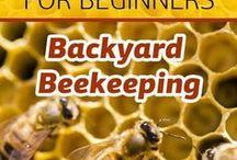 Beekeeping / Beekeeping tips and tricks