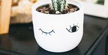 DIY Pflanzen / Kreative DIY Ideen rund um das Thema Basteln mit Pflanzen - z. B. Blumentöpfe, Blumenampeln, Deko mit Pflanzen