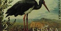 Philately - Filatelia - Fauna / Sellos de España - Tema - Fauna. Stamps of Spain - Theme - Fauna