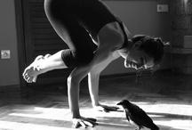 Health/Fitness / by Alaina Polaski