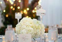 Wedding Ideas / by Taylor Scherer