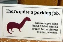 Hilarious / by Annissa Rhodes
