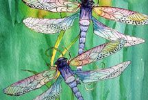 Dragonflies / My love of dragonflies  / by Patty McNamara