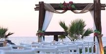 Wedding Ceremony & Arch Ideas/ Besime Organizasyon / Best Wedding Ceremony & Arch Ideas