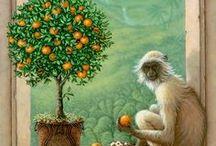 Naranjas / Y valencianas, clementinas, mandarinas, pomelos, etc