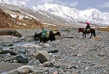 WildChina Explorer Grant / http://www.wildchina.com/wildchina-explorer-grant
