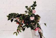 floral & foliage / beautiful florals + foliage