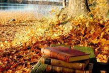 Évszakok / évszakok, tavasz, nyár, ősz, tél