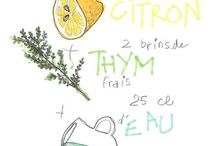 Aliments Herbes aromatiques