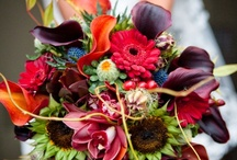 Wedding Flowers / by Rev Annie Lawrence