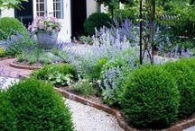 Garden / garden inspiration