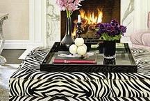 Zebra & Leopard / by Elisabeth Meda