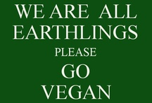 Vegan Way of Life / Veganism is followed by millions of people. They have realised that by being a vegan they can prevent animal suffering and cruelty.