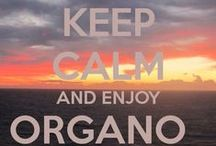 Organo Experiance / OG Beverages and Nutraceutical currently available.  http://www.avoncliffe.organogold.com/