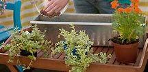Ab ins Beet! / Hier findet ihr viele tolle Garten-Bücher und viele praktische Tipps mit denen ihr euren Garten und Balkon auf Vordermann bringen könnt.