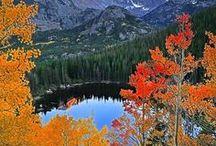 Automne / Les couleurs de l'automne ... ça n'a pas de prix.