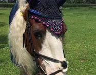 paarden bling bling gemaakt door mijzelf @madebyboogja