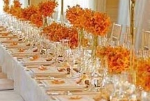 Autumn Weddings / by Tammy Merrill