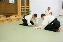 NWA Aikido (Memories) / Aikido is a traditional Japanese martial art characterized by dynamic movement, powerful throws, strikes, joint and pinning techniques.