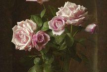 Flowers - stilllife