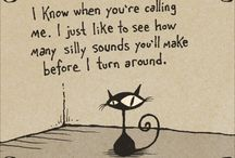 Funny / by Lindsay Decker