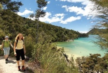 Abel Tasman National Park / The most accessible National Park in New Zealand. Stay Chalets @ Terraced Gardens and spend the whole day (or more) in the Abel Tasman National Park.