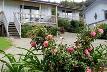 Chalets @ Terraced Gardens / Three self contained chalets set on the hill overlooking the apple, pear & kiwi fruit orchards of the Riwaka Valley with views of Tasman Bay only 10 minutes from #AbelTasmanNationalPark