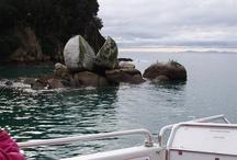 Rocks of New Zealand