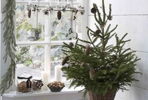 Decorating with Nature!