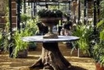Garden Centers & Nurseries