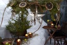 Outdoor Christmas Finery