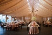 Color scheme: Blush Pink & Champagne tones