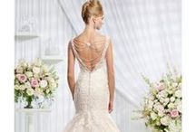Back Detail Wedding Dresses / Beautiful selection of Wedding Dresses in stock at The Cotswold Frock Shop in Stow on the Wold